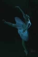 Лебединое Озеро - Swan Lake - Ballet